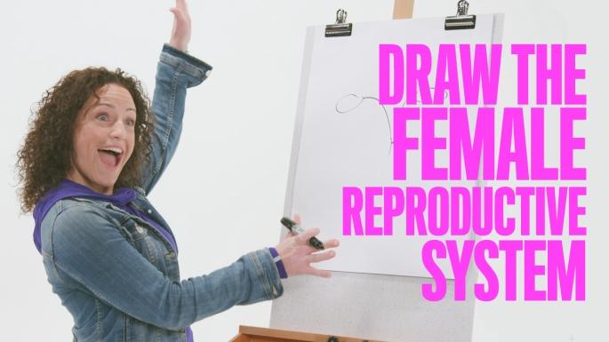 WMAsk_ReproductiveSystem